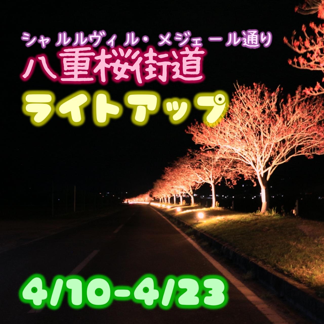 八重桜街道ライトアップ